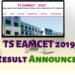 TS-EAMCET-2019-Result-Announced-Aglasem