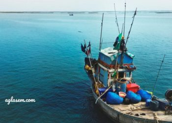 Indian Coast Guard 2021 Navik and Yantrik Online Application Form